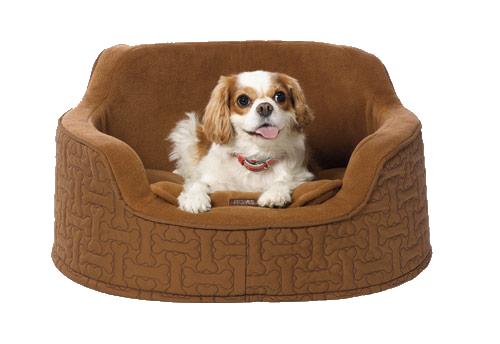 Martha Stewart Holiday Dog Beds